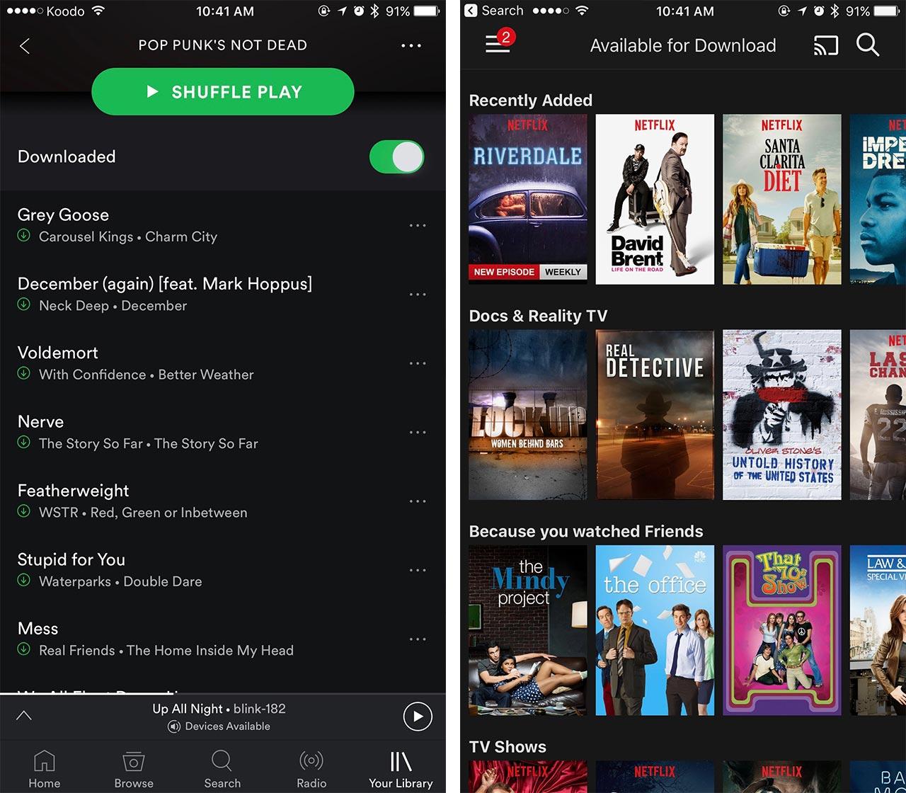 Netflix and Spotify data saving screenshot