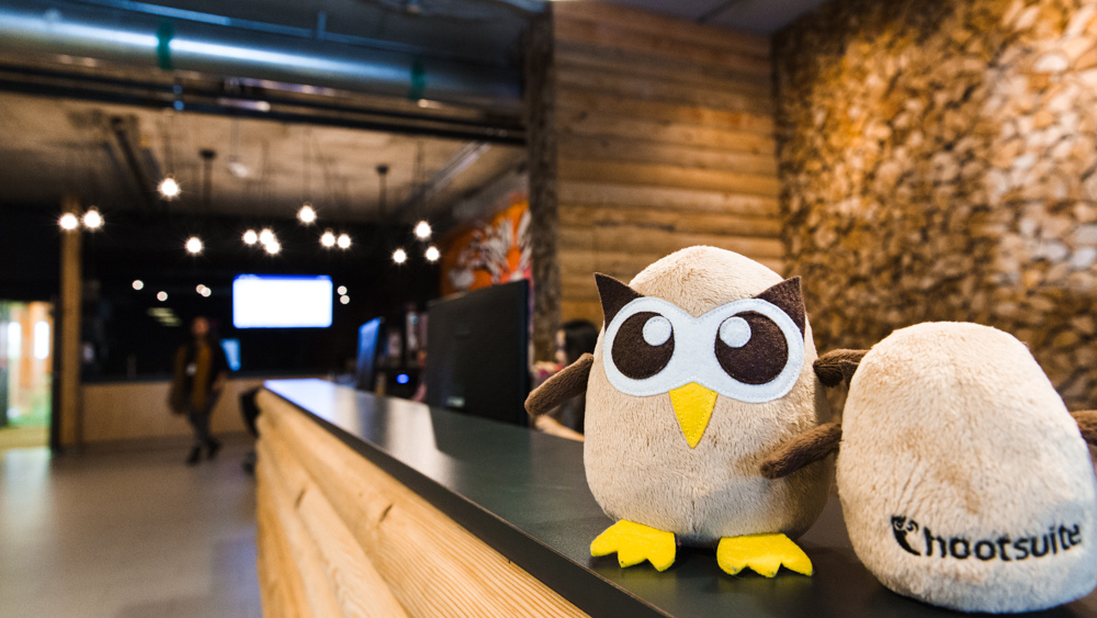 Hootsuite owl at office