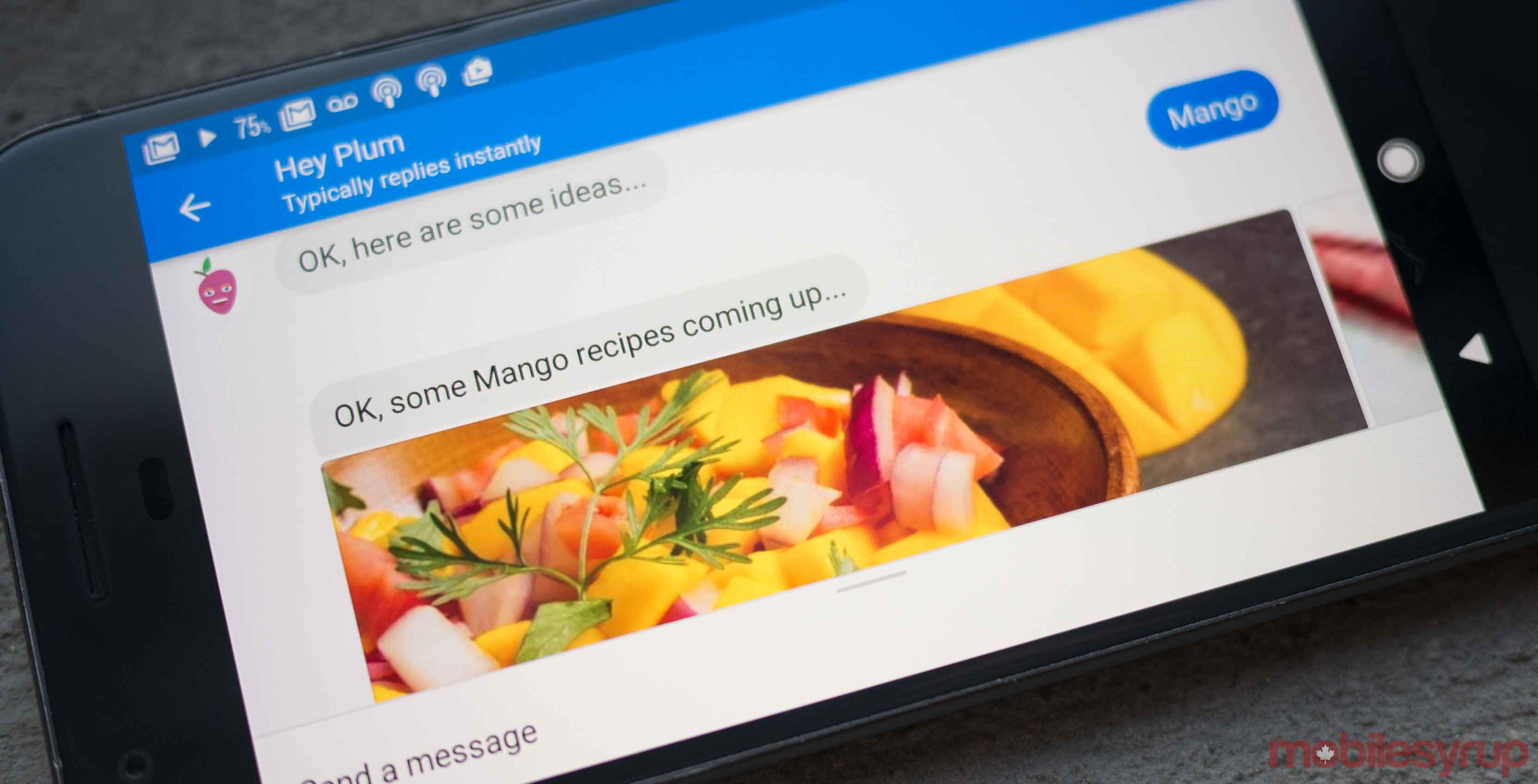 Photo of Plum app on a Google Pixel