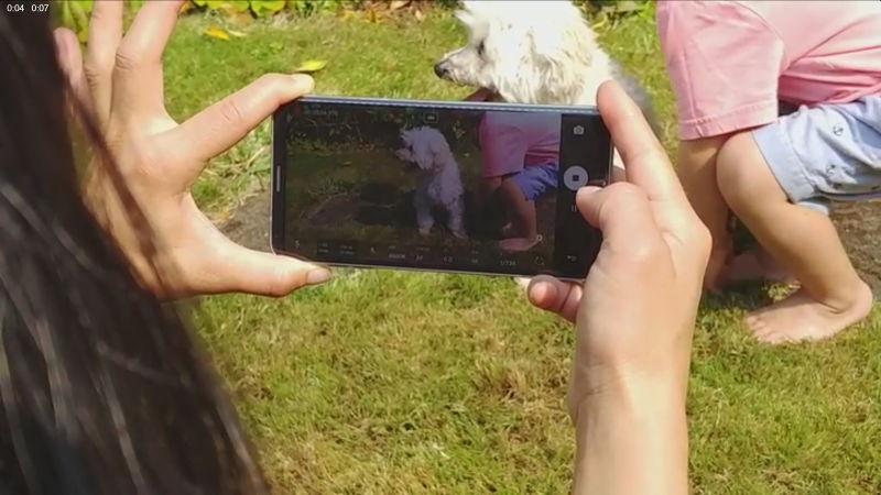 An image showing a photographer taking a photo of a dog using the LG V30