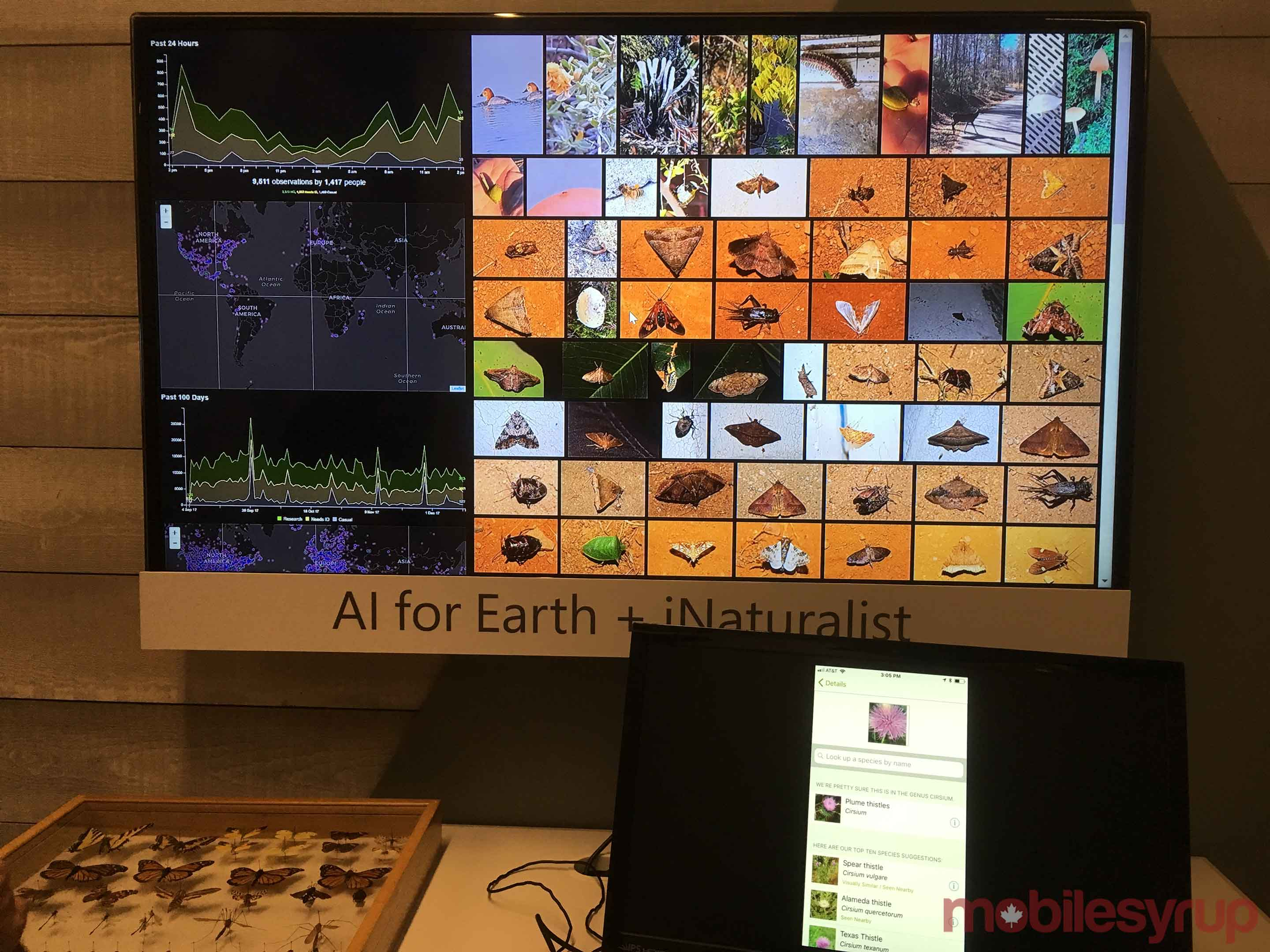 AI for Earth booth