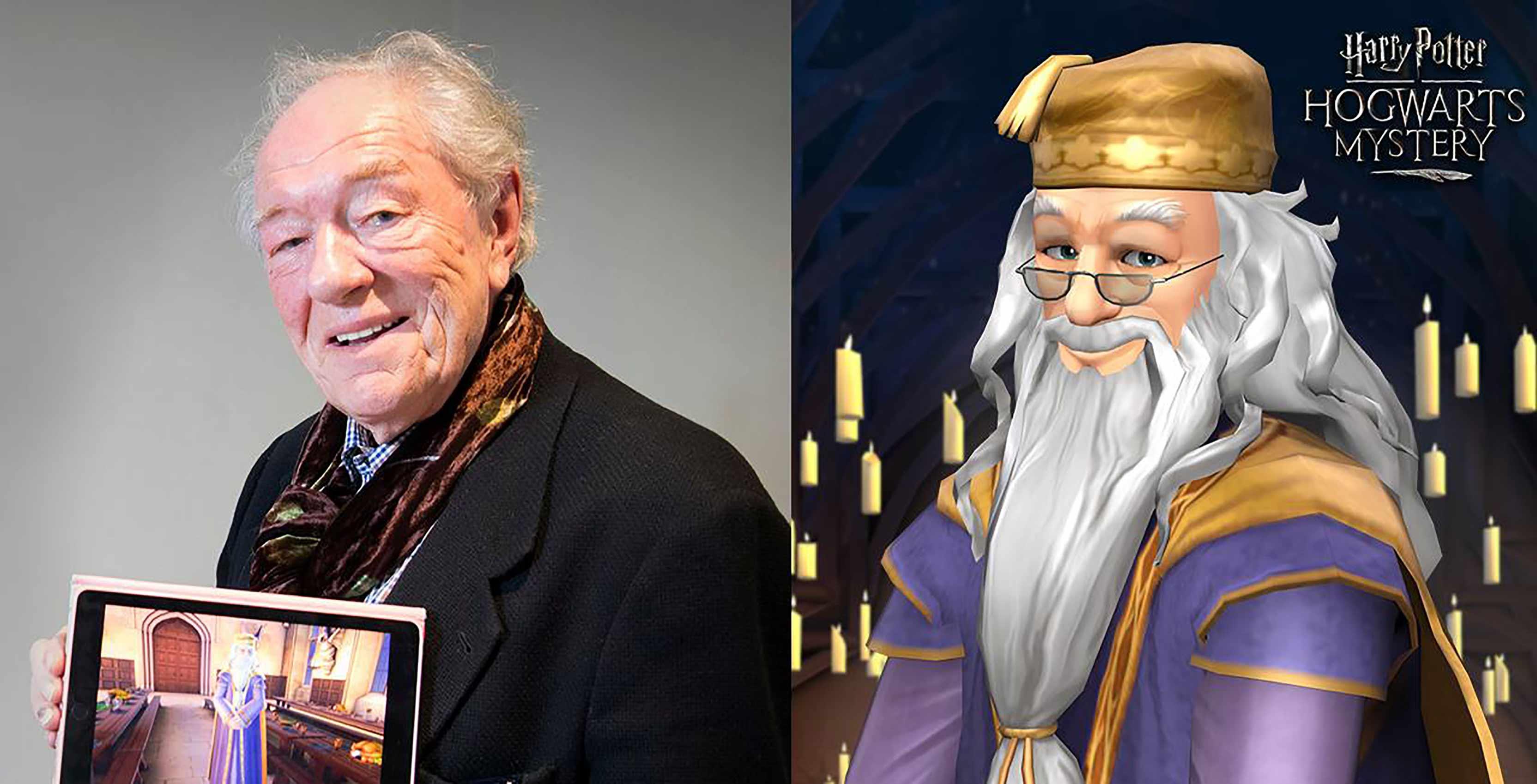 Harry Potter Hogwarts Mystery Michael Gambon