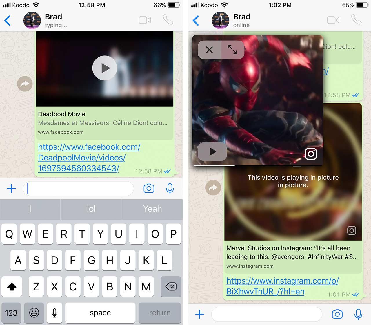 Whatsapp Facebook Instagram videos