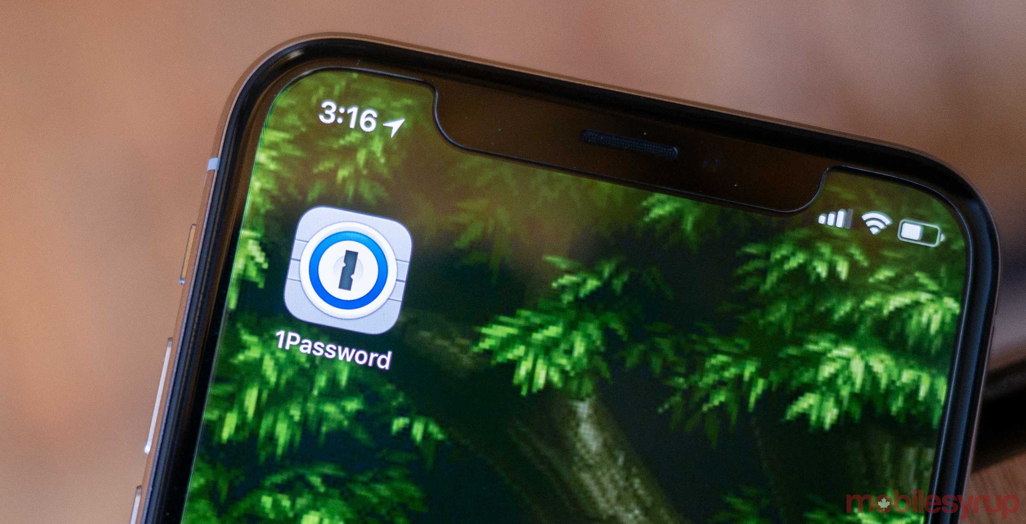1password-on-ios