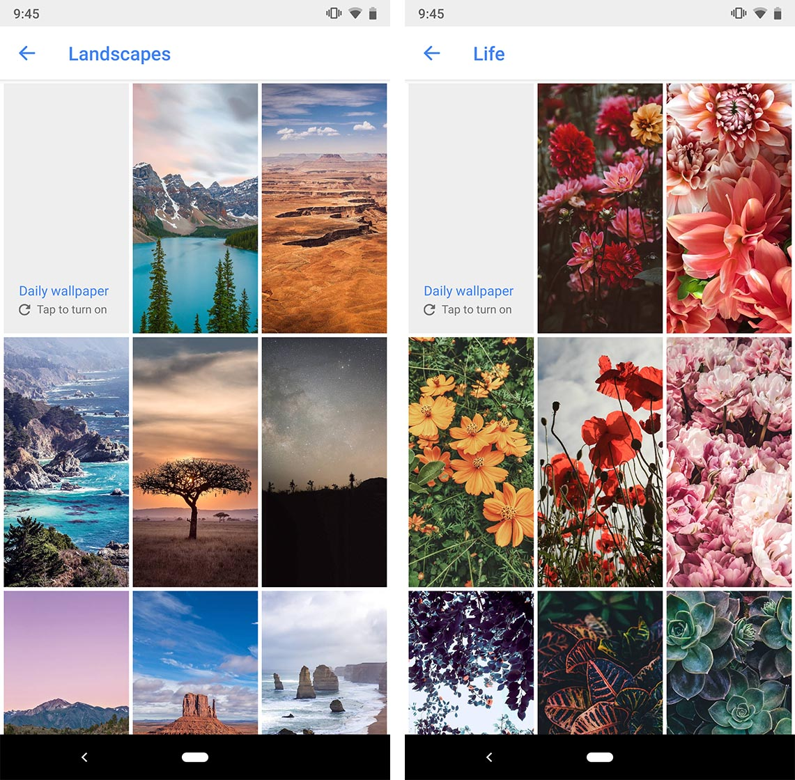 Google Wallpapers Landscapes and Life collections