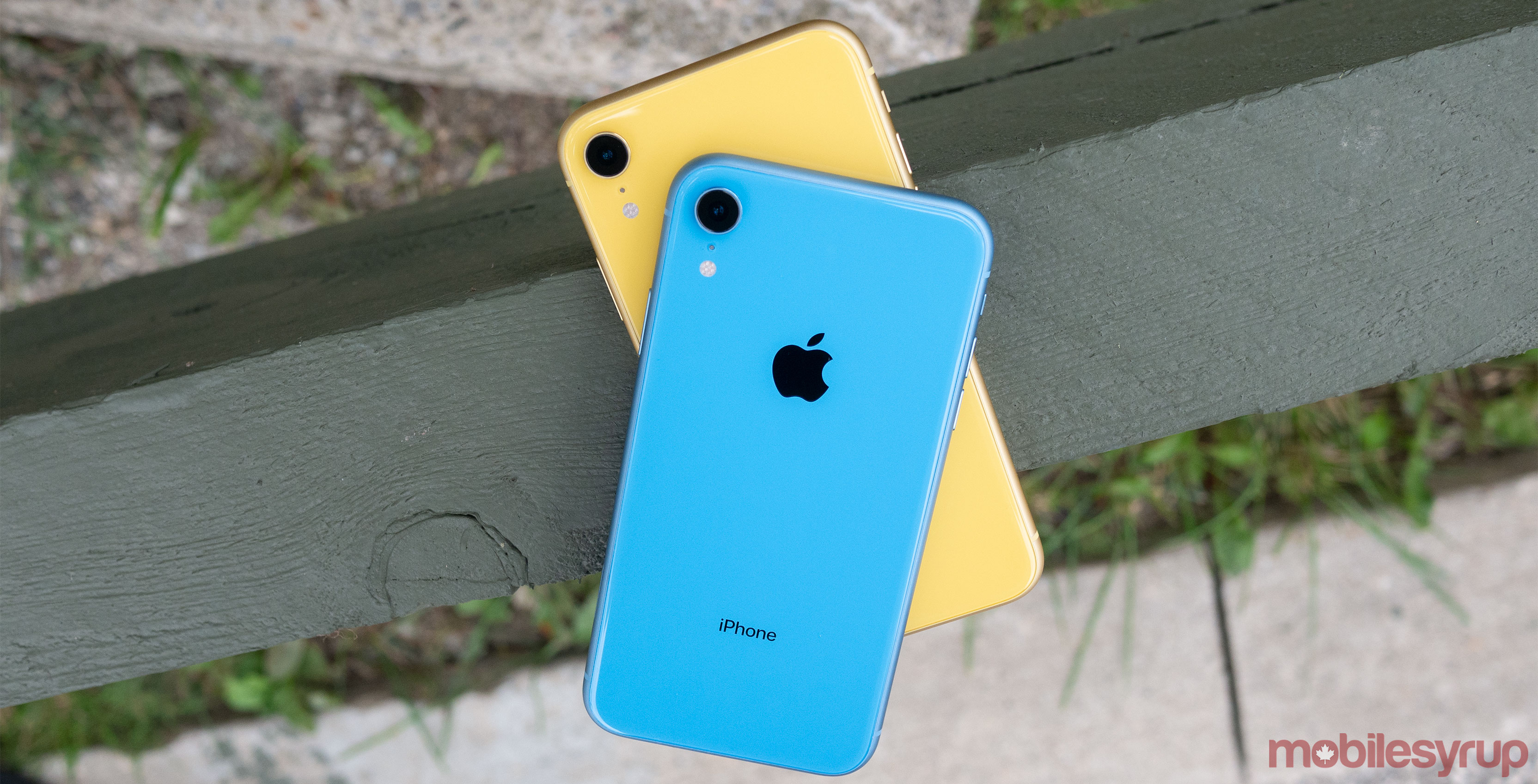 Iphone Xr Review Best Iphone For The Average Apple User