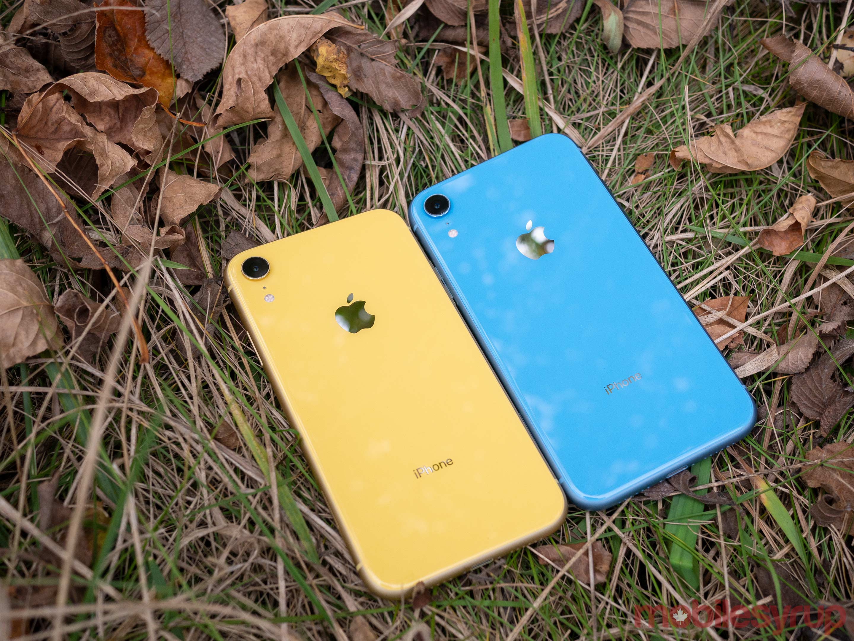 iPhone XR yellow and blue