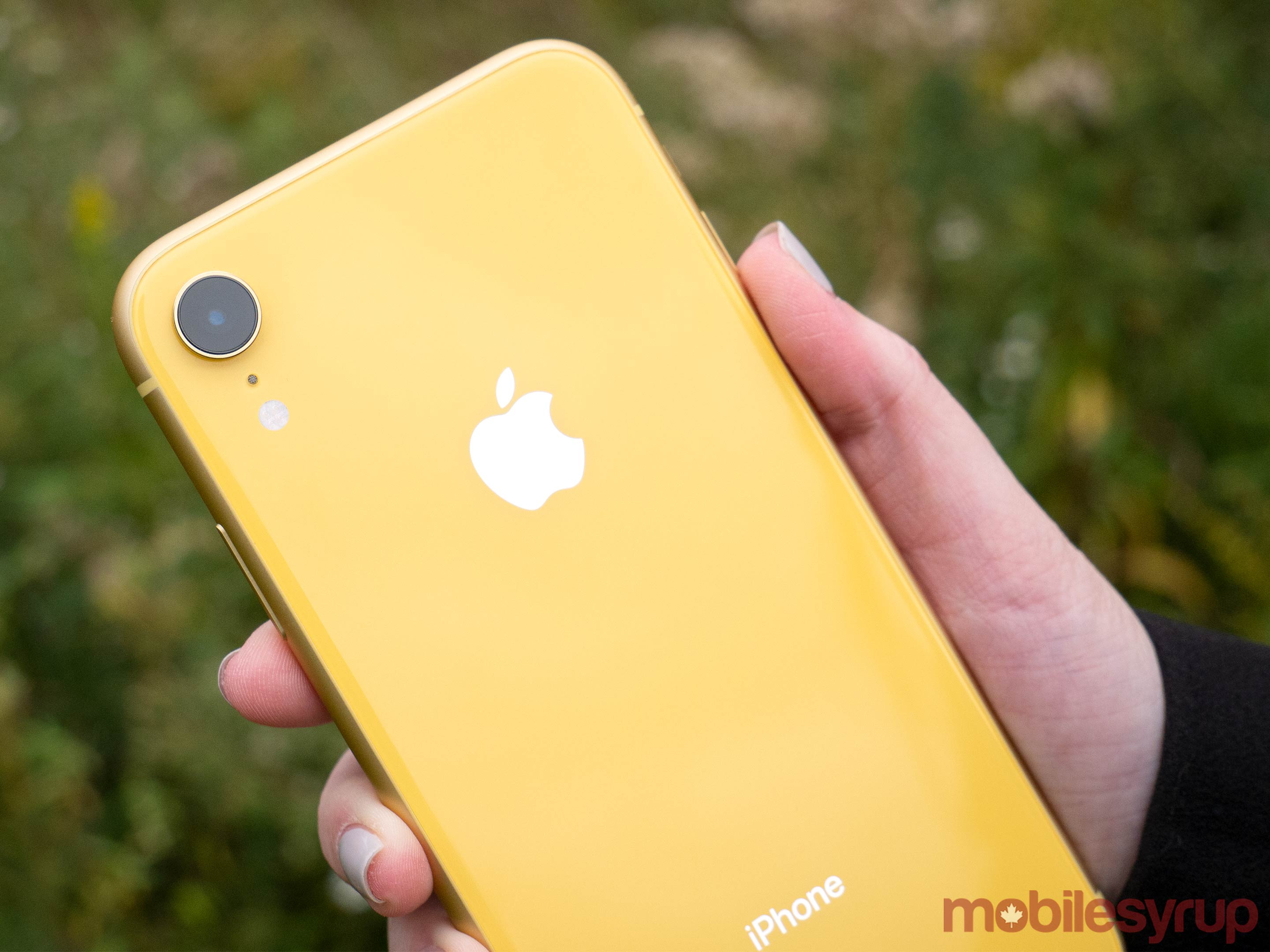 Yellow iPhone XR rear