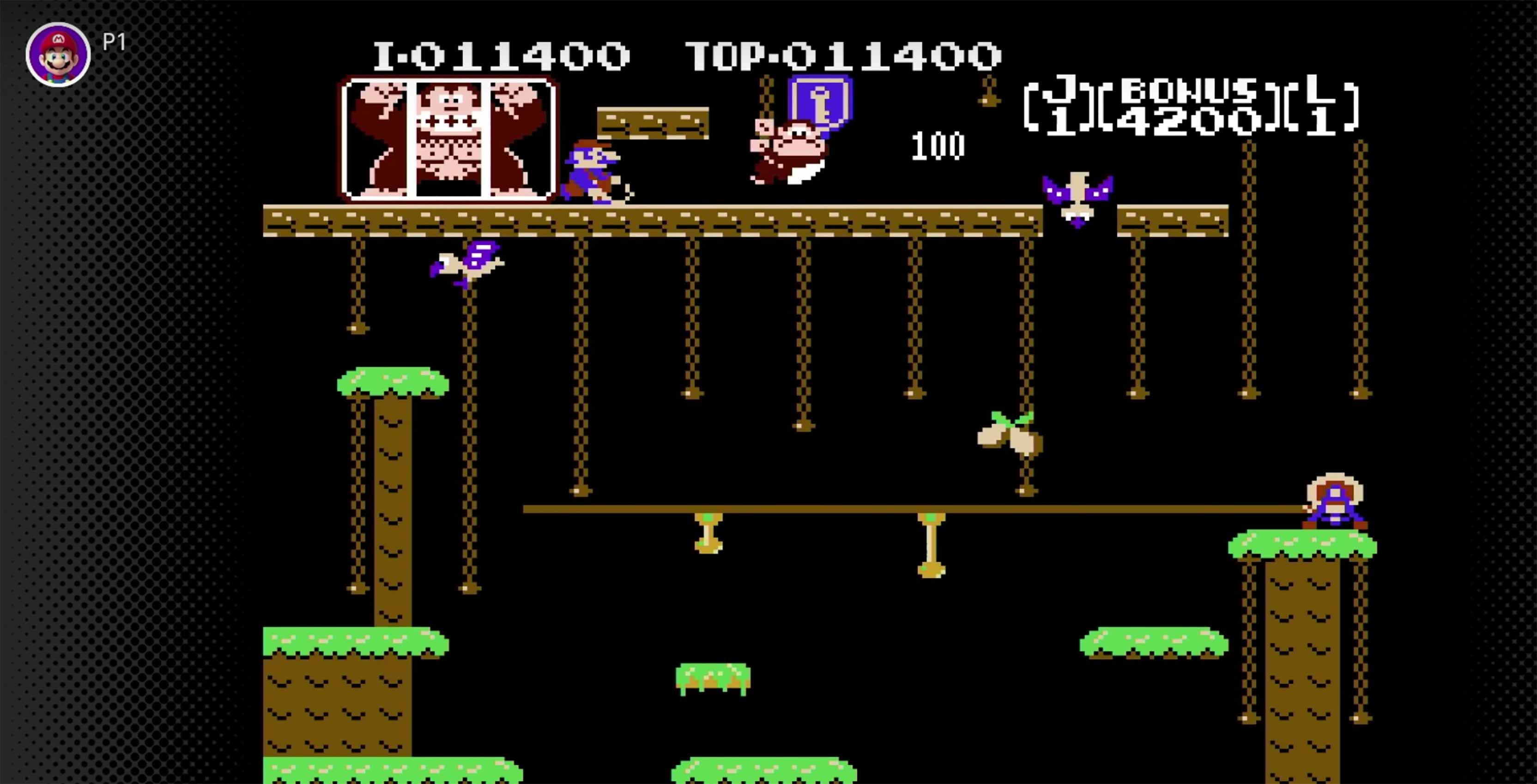 Donkey Kong Jr. gameplay