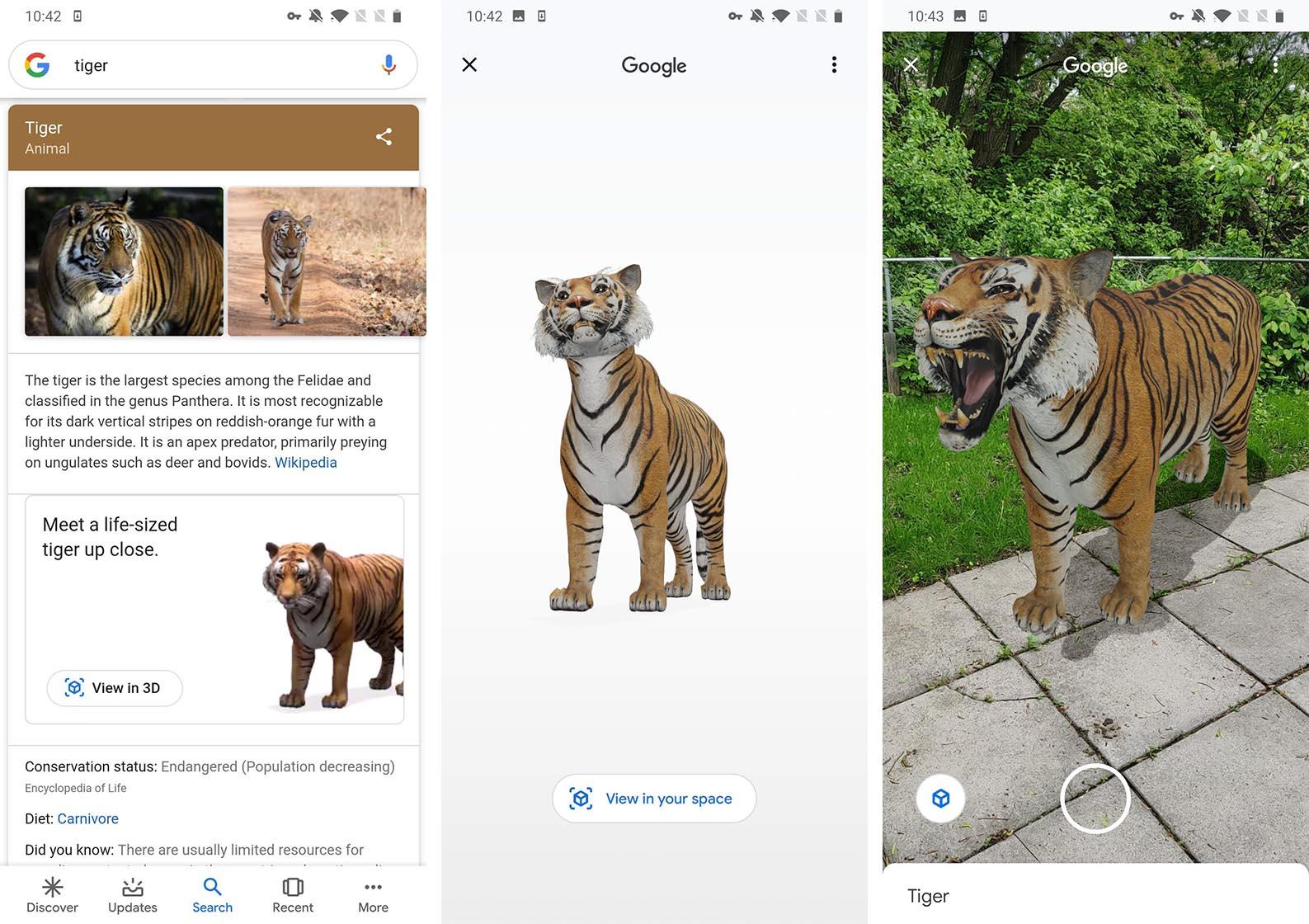 Google AR animals