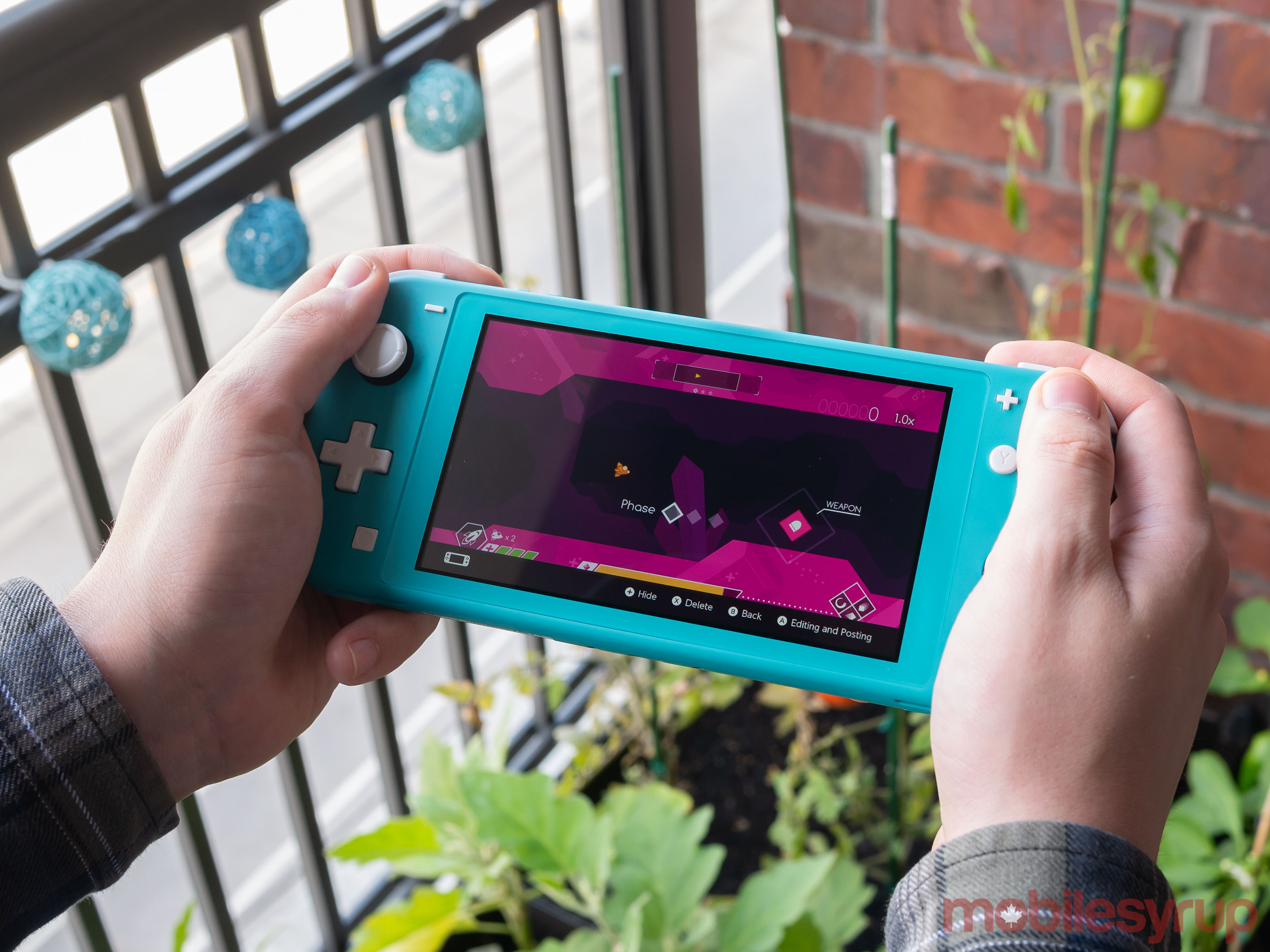 Switch Lite in hands