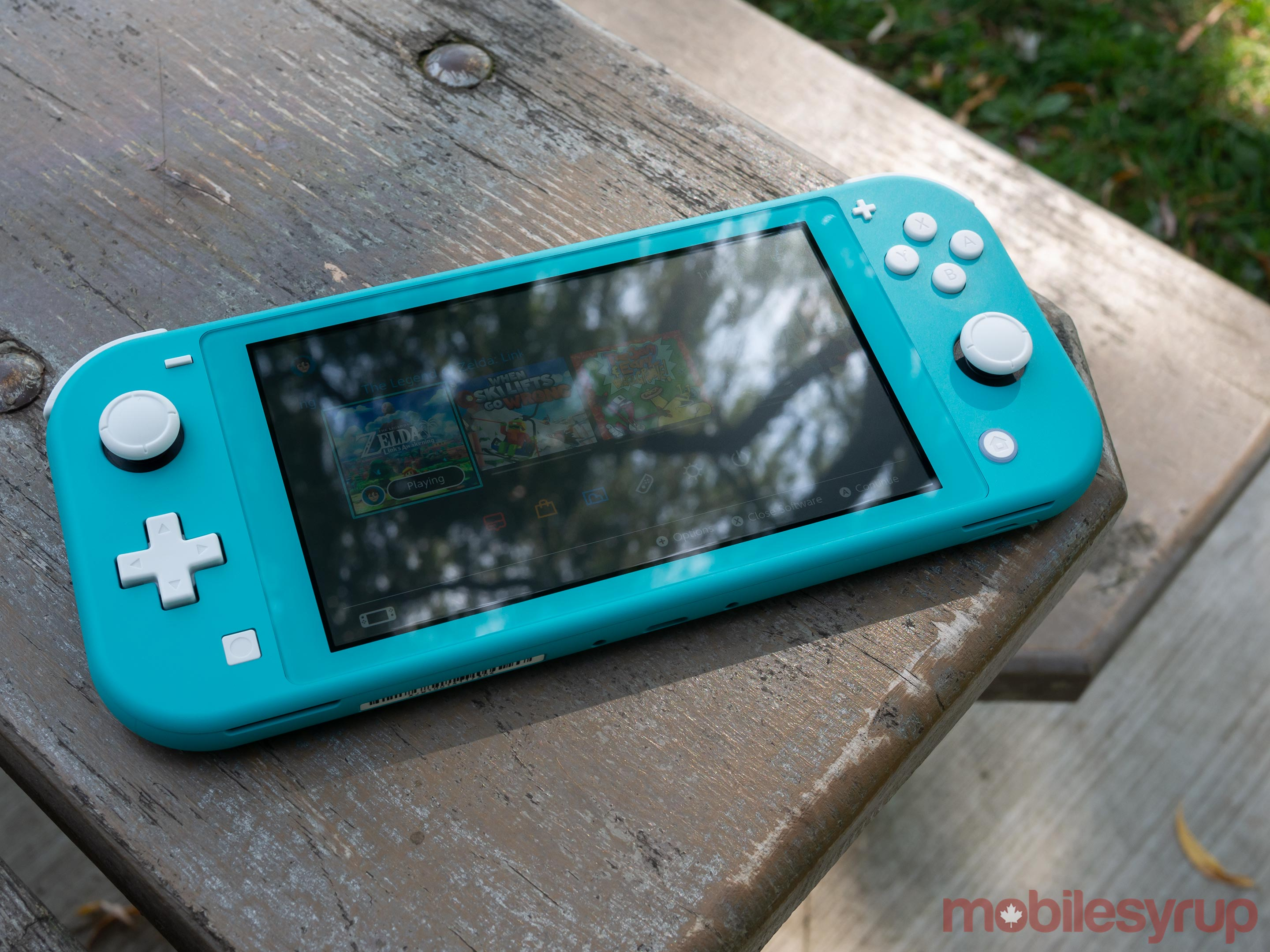 Switch Lite on picnic table
