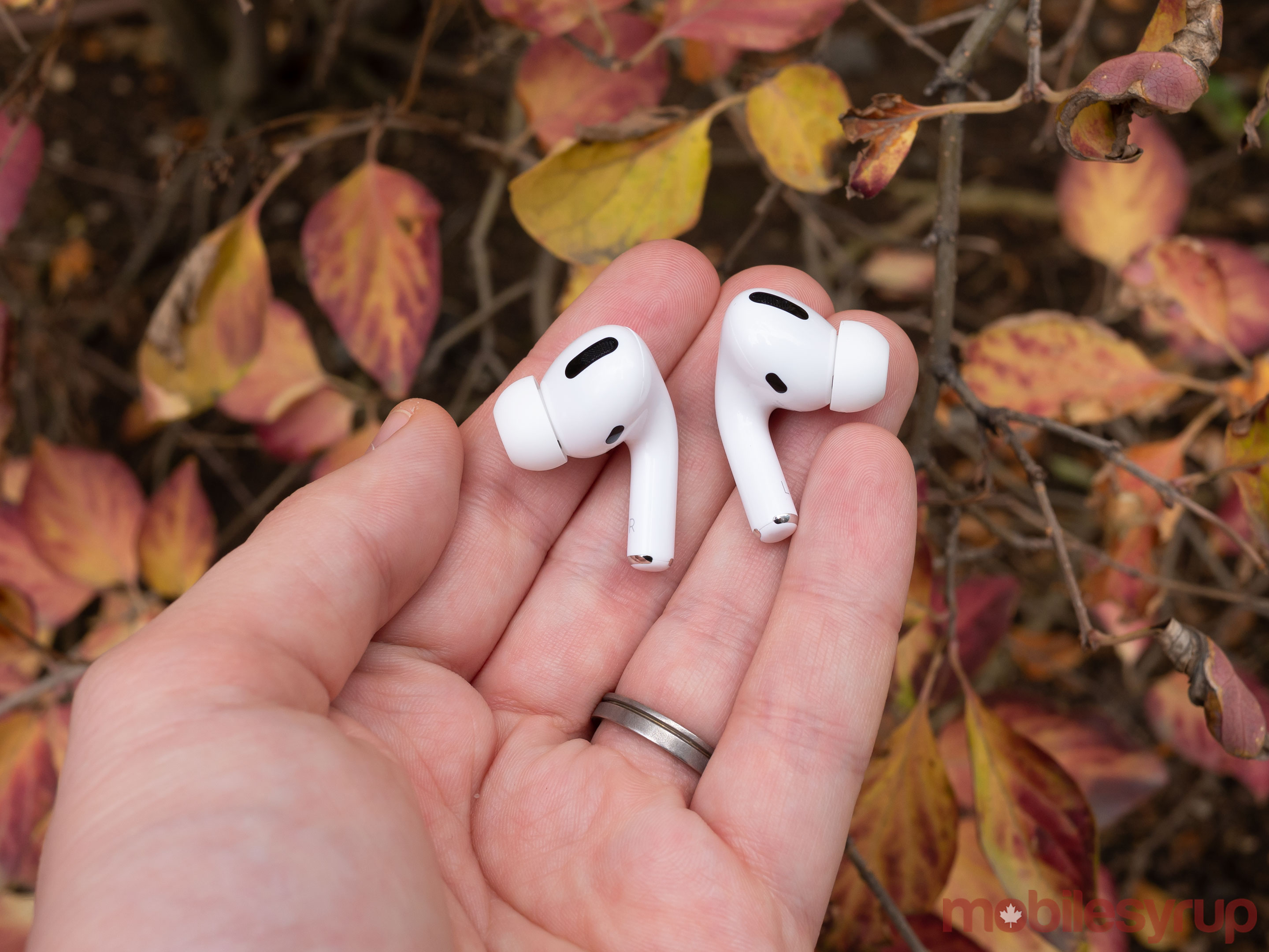 AirPods Pro in front of leaves