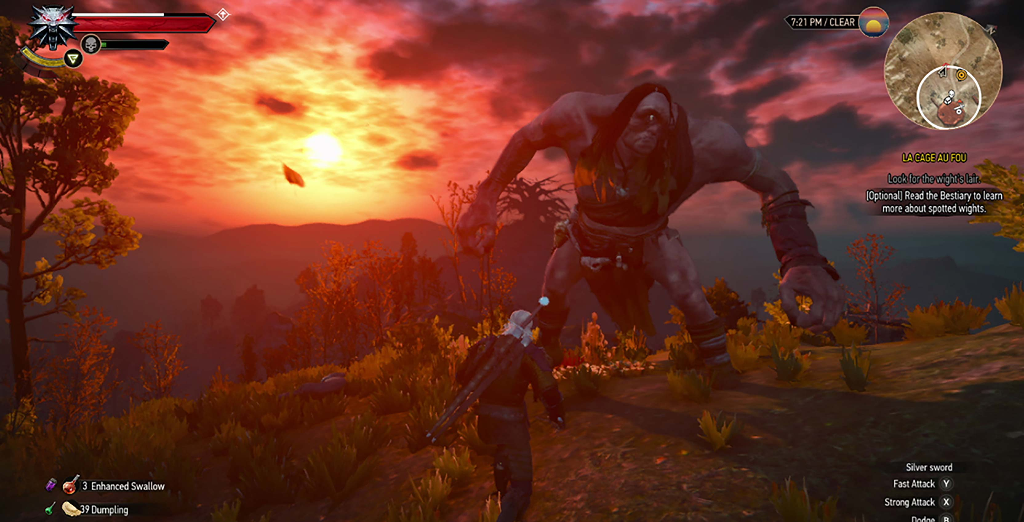 The Witcher 3 monster fight