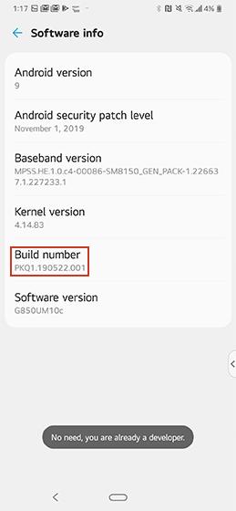 LG developer options