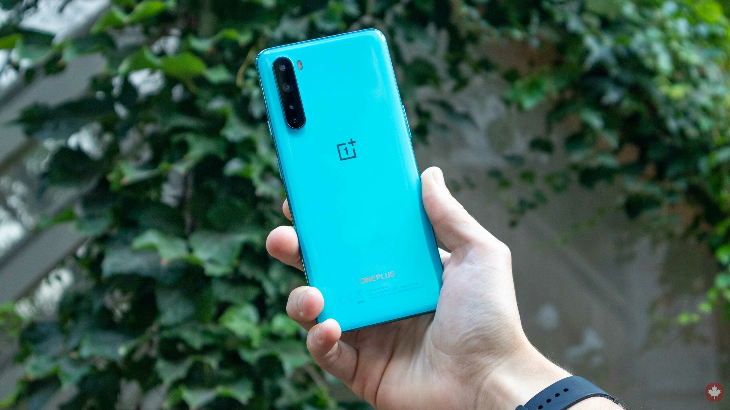 Rumoured OnePlus Nord SE is reportedly cancelled