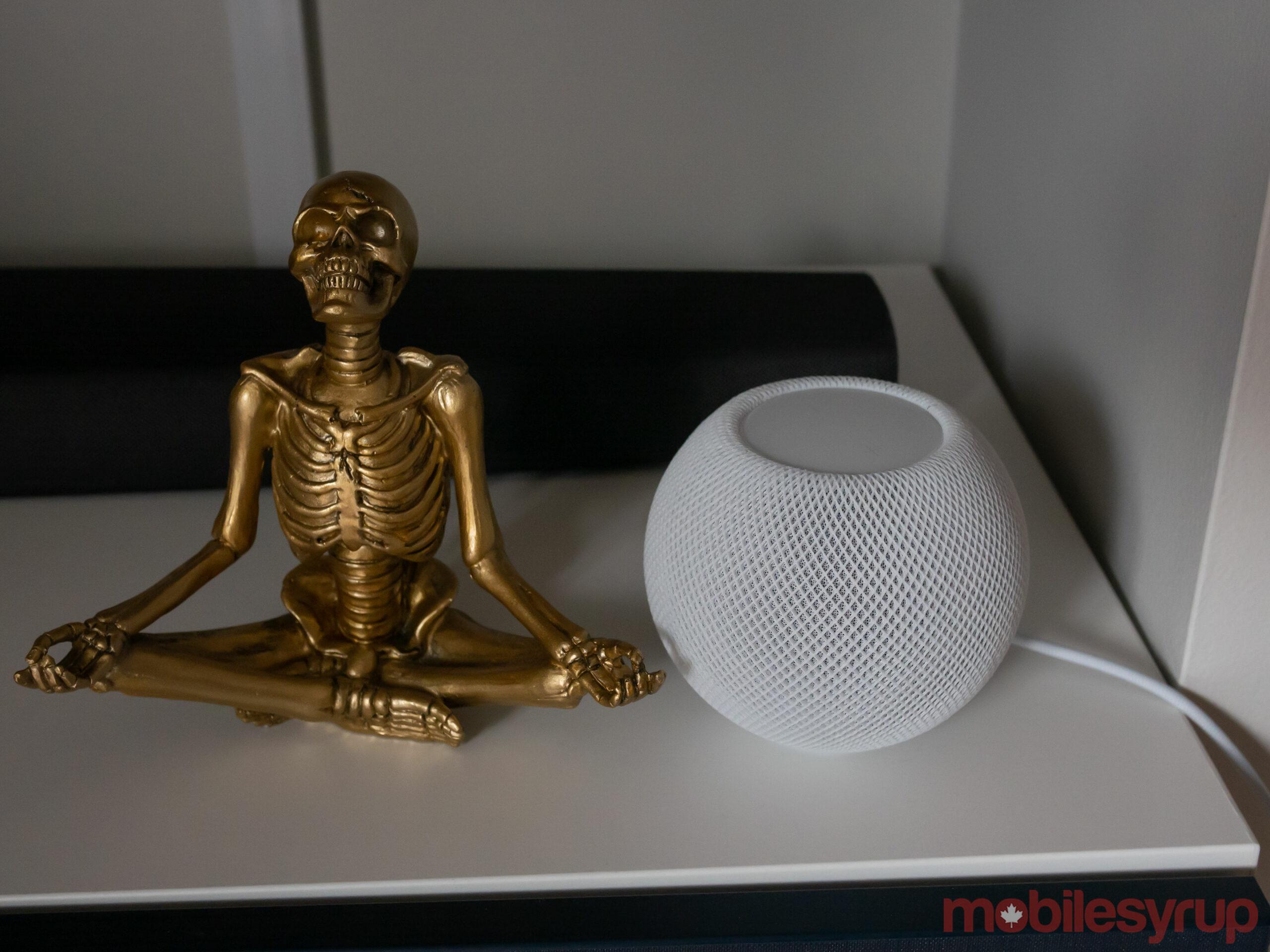 HomePod mini beside skeleton