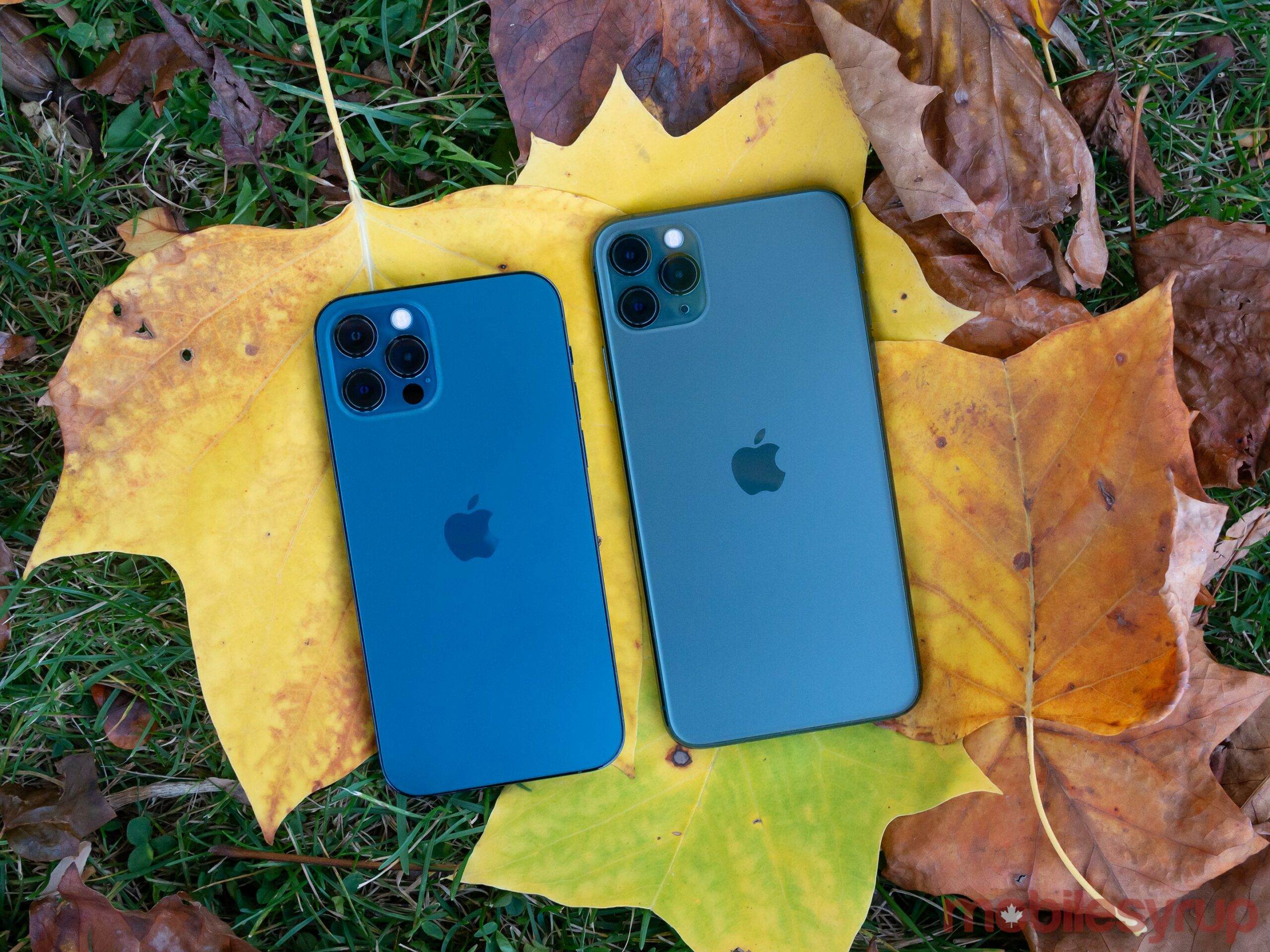 iPhone 12 Pro and iPhone 11 Pro Max