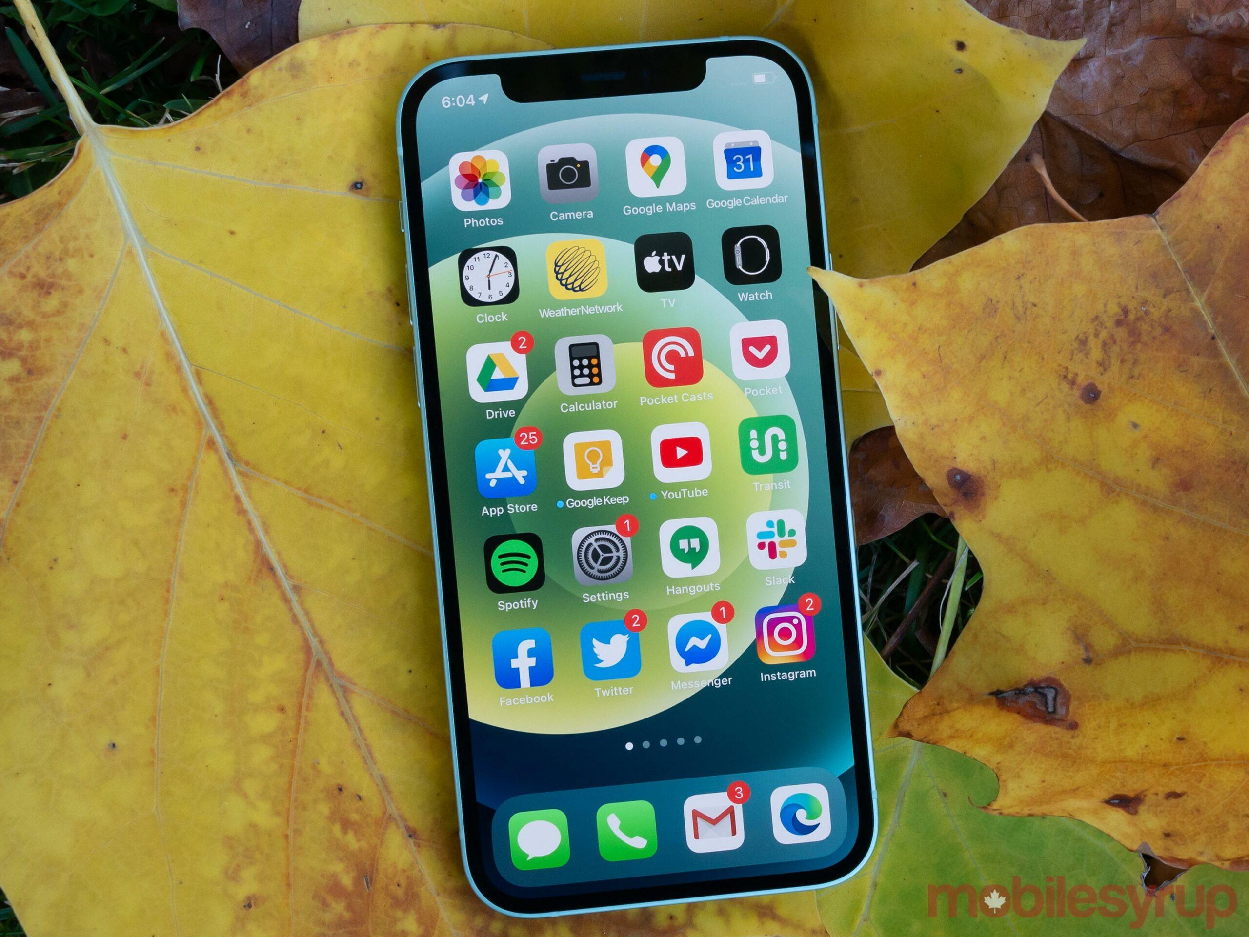 iPhone 12 display