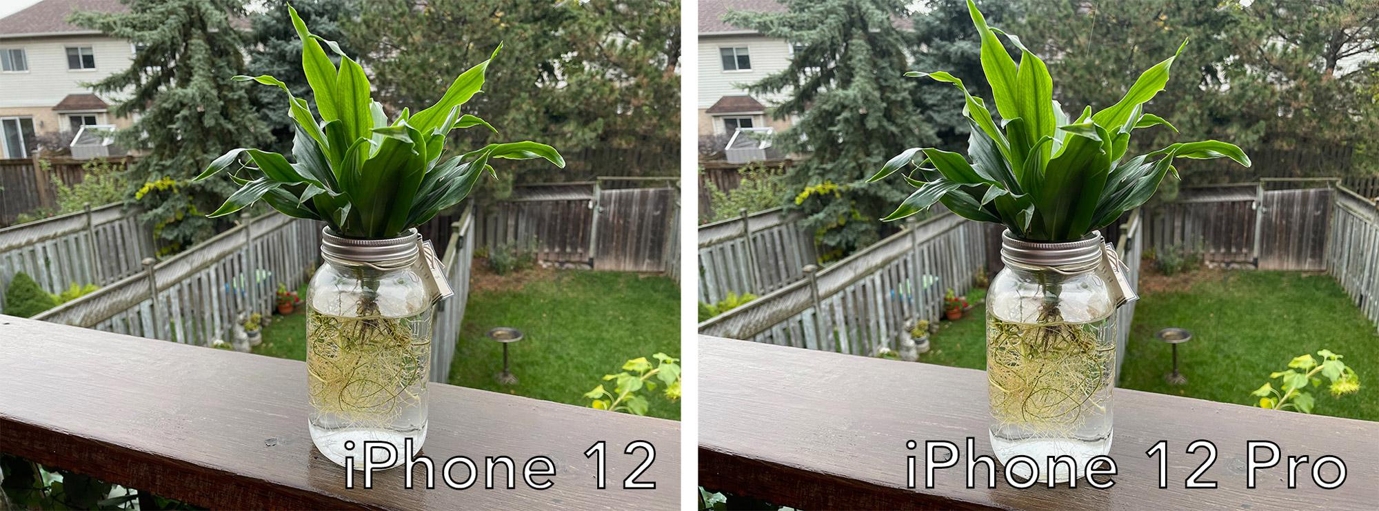 iPhone 12 photo compare