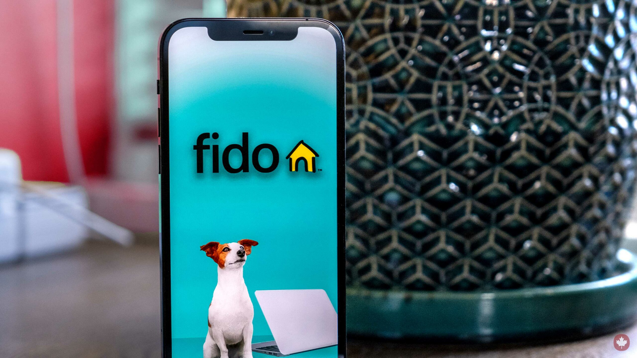 , [:en]Fido reductions information offers, affords 10GB/$50 and 16GB/$75 plans[:], Laban Juan