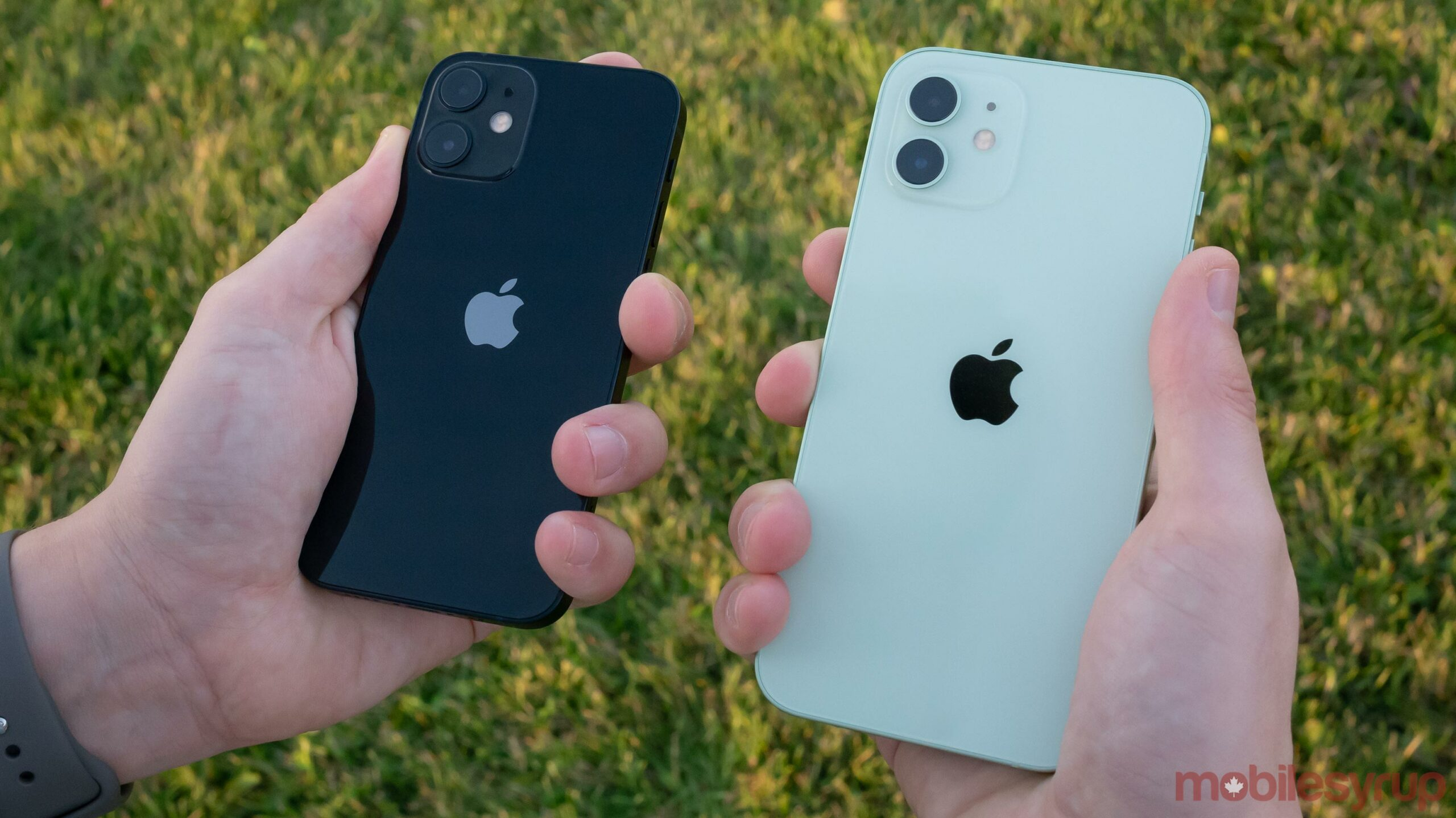 iPhone 12 mini and iPhone 12 Pro